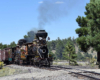 Closer look of a double-headed steam passenger train in a prairiegrass-pine forest area.